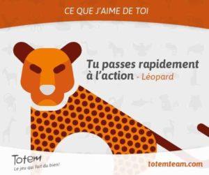 Jeu TOTEM carte léopard