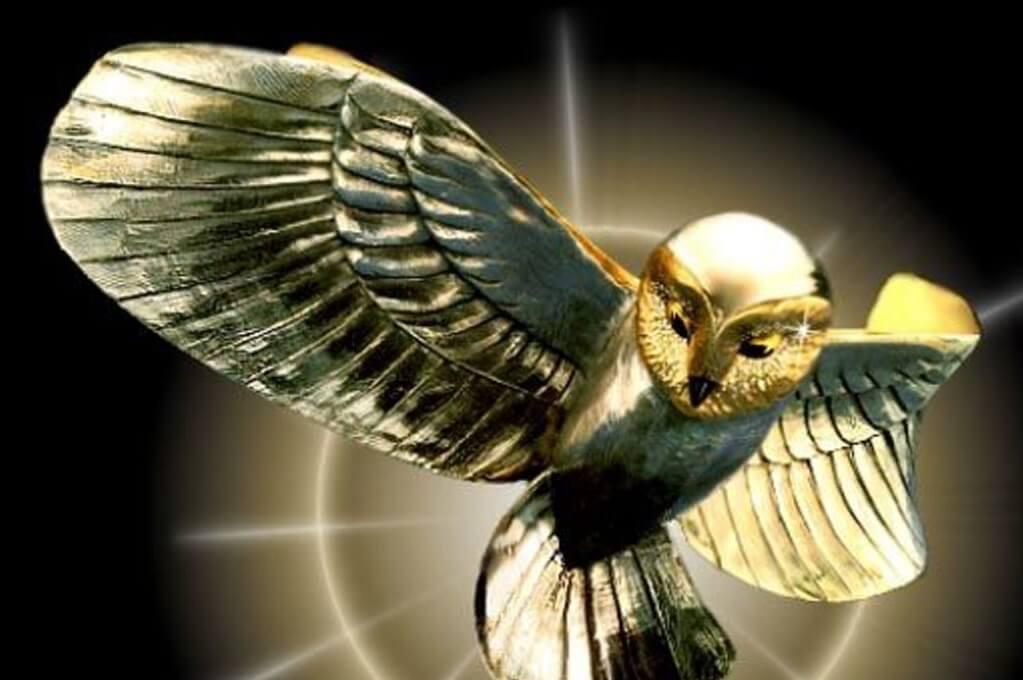 Image de la chouette d'or